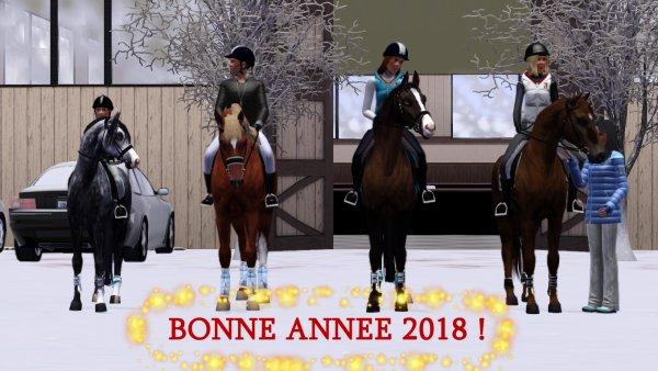 Bonne année 2018 !!