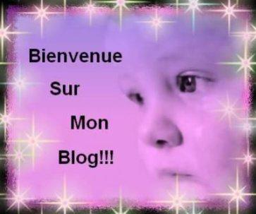 ~ Bienvenue Sur Mon Blog :D ~