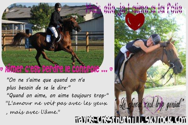 """"""" Il ne faut jamais oublier que le cheval est bien plus que la moitié du cavalier ... """""""