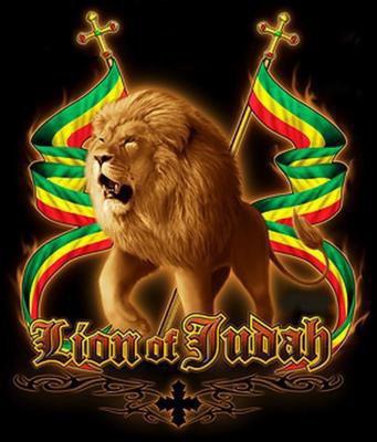 bo lion