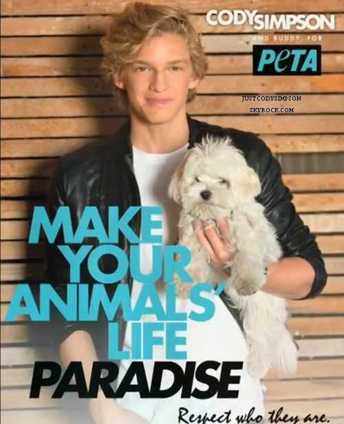 ____ Vidéo de Cody dansant pour ses fans après le concert à San Diego. + Cody soutient l'association Peta. ++ Cody en collaboration avec The Wanted ! ____