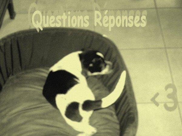 Artiicle #4# Questions réponses :-)