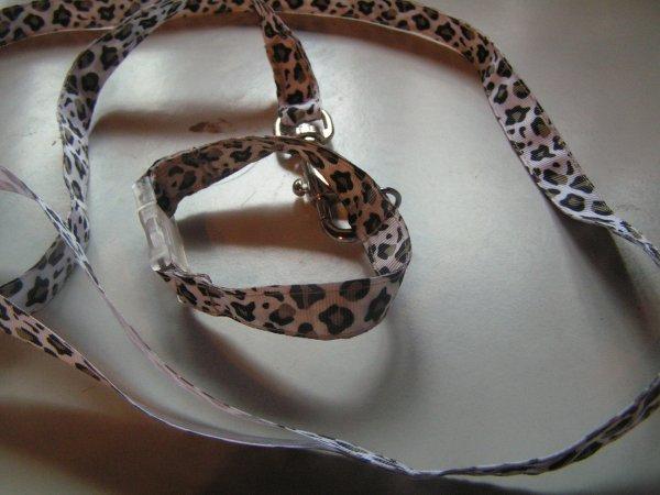 Laisse et collier sur mesure en nylon
