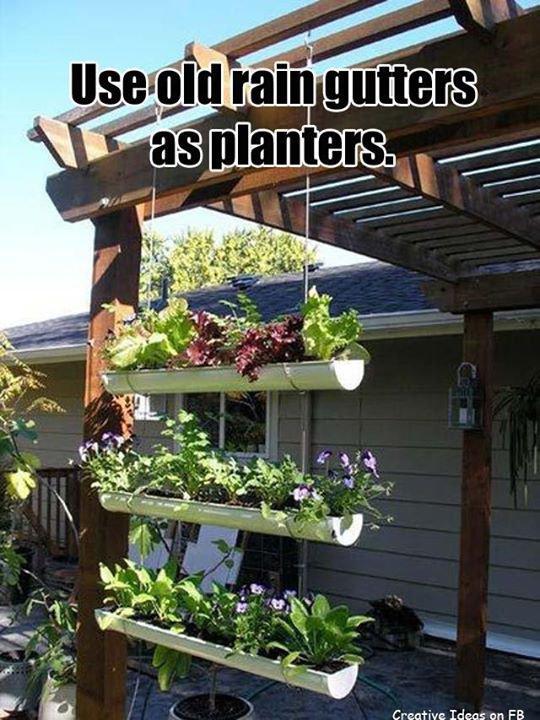 Pas de jardin et envie de cultiver des épices, salades, fraises ...
