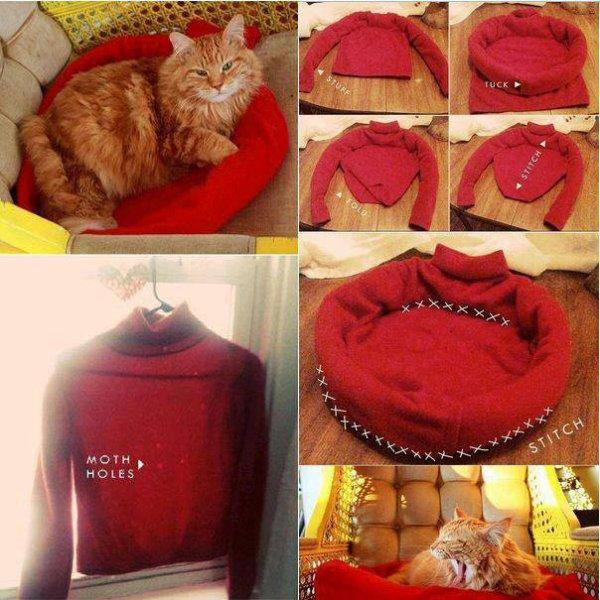 Avec un vieux pull ce créatif du net a créer un panier pour chat ou chien très original