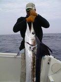 Action de pêche au Marlin au Sénegal