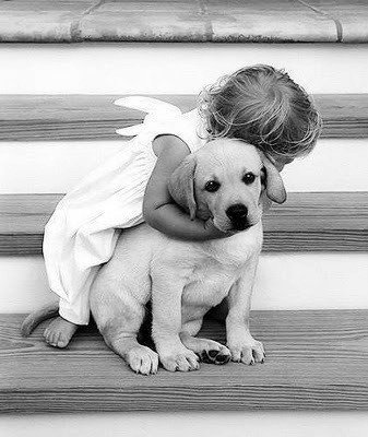 INTERDIRE UN ANIMAL FAMILIER EST ILLÉGAL !!!