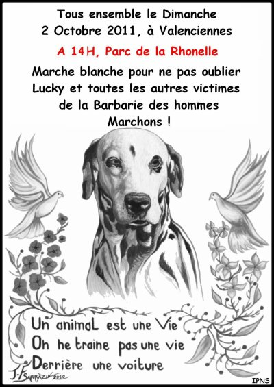 MARCHE BLANCHE POUR LUCKY LE DALMATIEN A VALENCIENNES