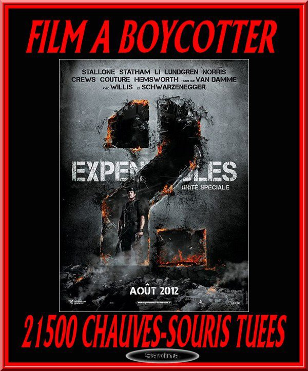 """BOYCOTTEZ """"THE EXPENDABLES 2"""" !!!!!! TOUTES LES INFOS ICI"""