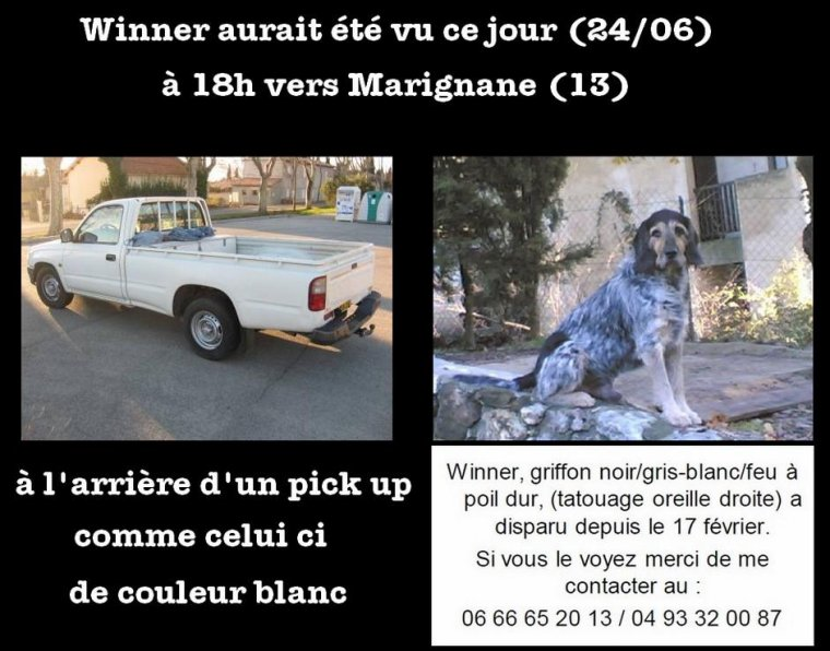 TOUS A LA RECHERCHE DE WINNER !!!!!