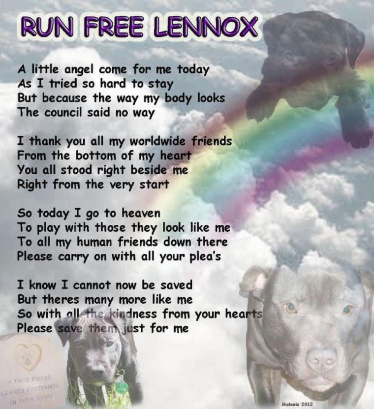 LENNOX EST MORT AUJOURD'HUI 11 JUILLET 2012 A 7H DU MATIN - RIP MON BEBE