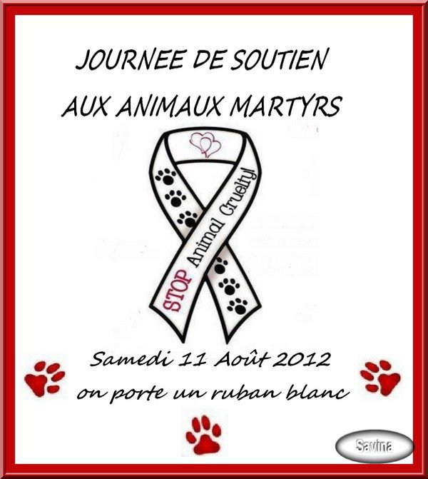 11 AOÛT - JOURNEE DES ANIMAUX MARTYRS