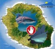 Cyber action pour la Réunion  - Stop aux massacres des requins !