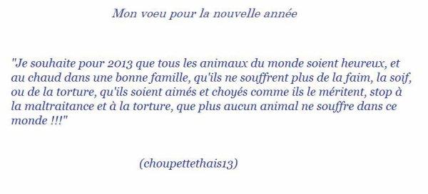 Mon voeu pour 2013