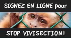 Signez en ligne : Stop Vivisection France
