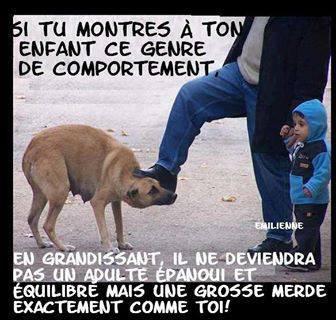 Le respect des animaux passe par l'éducation des petits !!!!!
