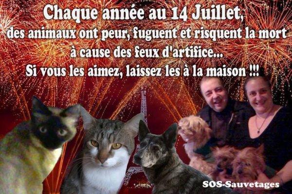 ATTENTION AU 14 JUILLET !!! PETARDS ET FEU D'ARTIFICE SONT MAUVAIS POUR NOS ANIMAUX !