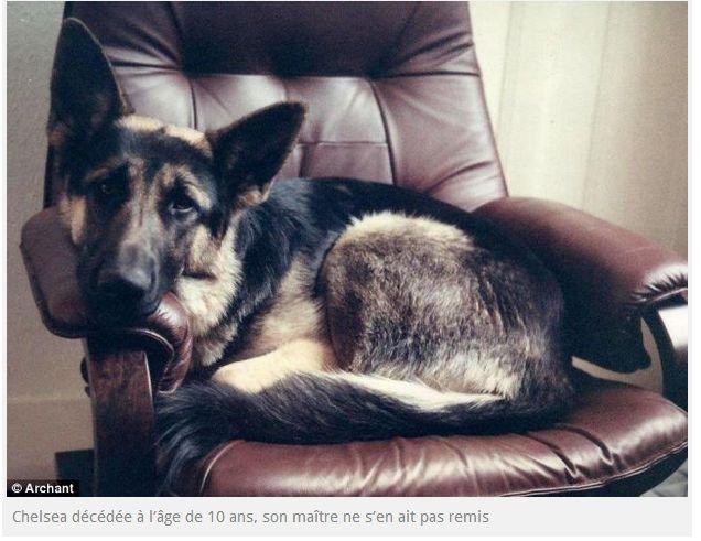 Un homme lègue plus de 429 000 ¤ à une association de protection animale après sa mort