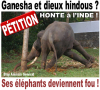 L'INDE MALTRAITE SES DIVINITES ! STOPPONS CETTE HONTE !!