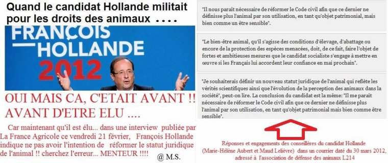 Hollande refuse de modifier le statut des animaux - PETITION !