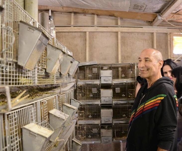 Co-créateur des Simpsons - Sam Simon rachète une ferme à fourrure de chinchillas