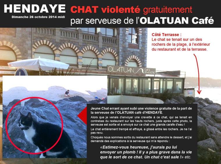CHAT VIOLENTE GRATUITEMENT PAR LA SERVEUSE DE L'OLATUAN CAFE