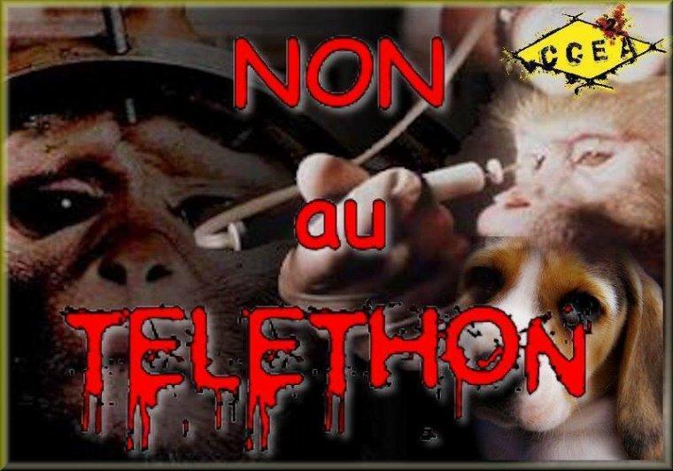 LE TELETHON JE DIS NON !!!!!