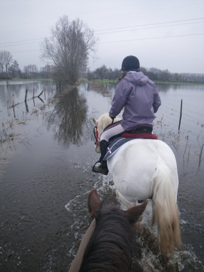Ballade dans les chemins inondés! (10 mars 2012)