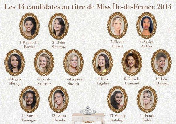 Les candidates à Miss Ile de France 2014