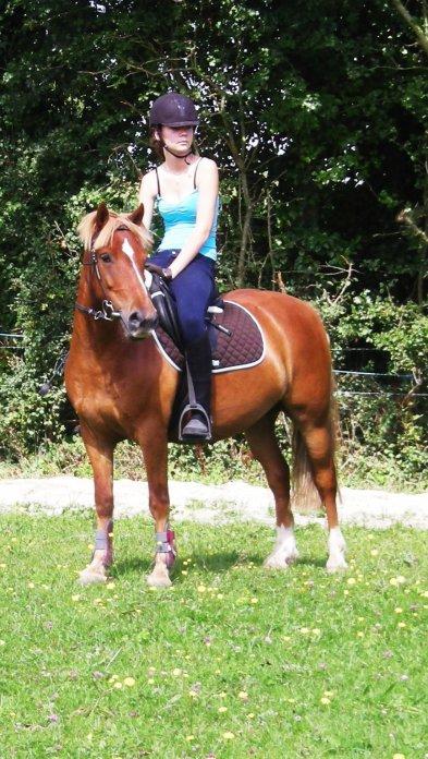 L'equitation est le seul sport individuel qui se pratiquent a deux..♥
