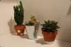 DIY: décorer son bureau | back to school 2015