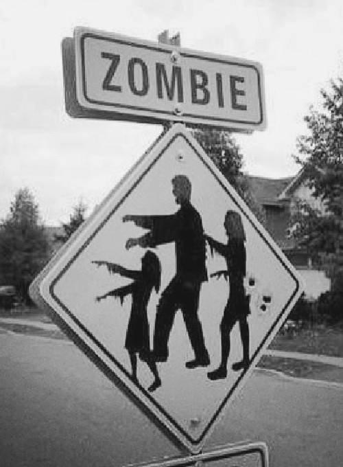 """Résultat de recherche d'images pour """"humour zombie"""""""