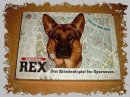 REX FOR EVER