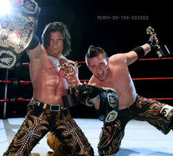 The Miz World Tag Team Champion