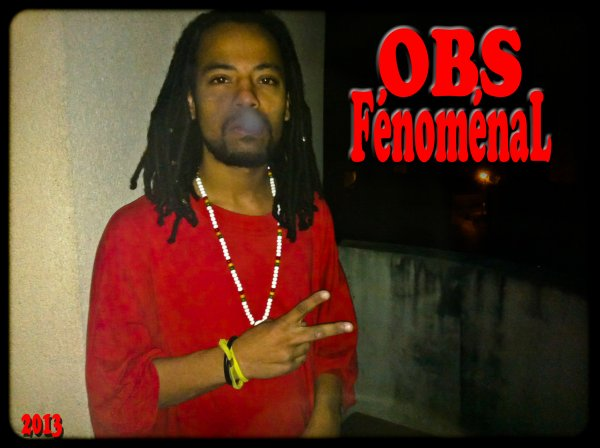 FénoménaL Vybz / OBS FénoménaL-Authentic Black Feeling Sound System [Dubplate Dancehall 2013] (2013)