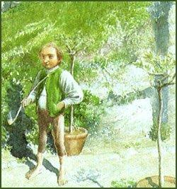 # Bilbo le hobbit: