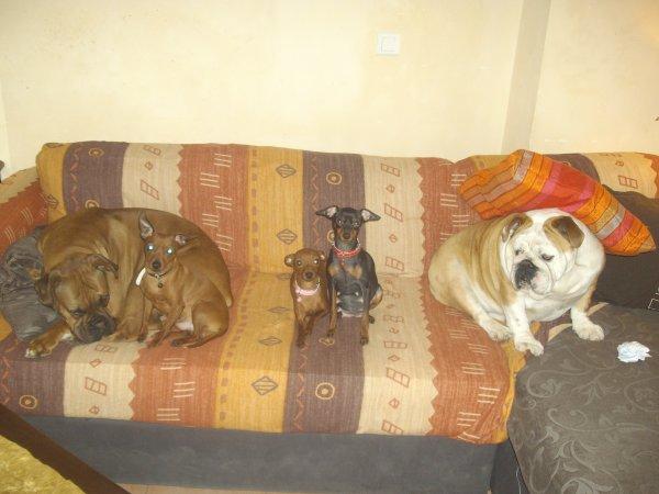 les trois monstre et mes deux gros monstre!!!!
