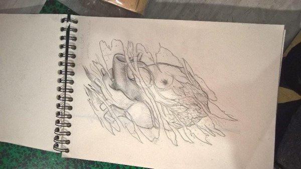 coeur biomecanique