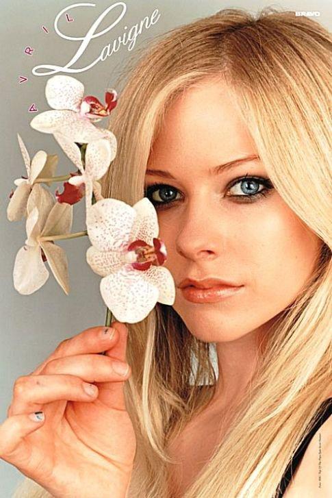 Bon anniversaire Avril!!!!!!! J'te kiff!!!!!!! Tu resteras toujours ma chanteuse préférée!!!!!!!!