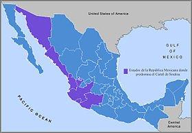 Sinaloa-Cartel