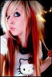 Photo de coiffure2008