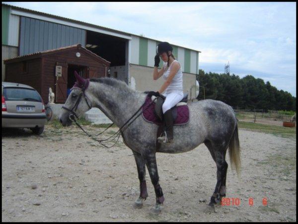 « Aime ton cheval comme il est, & non comme tu voudrais qu'il soit. »                                                                               C. Lodin.