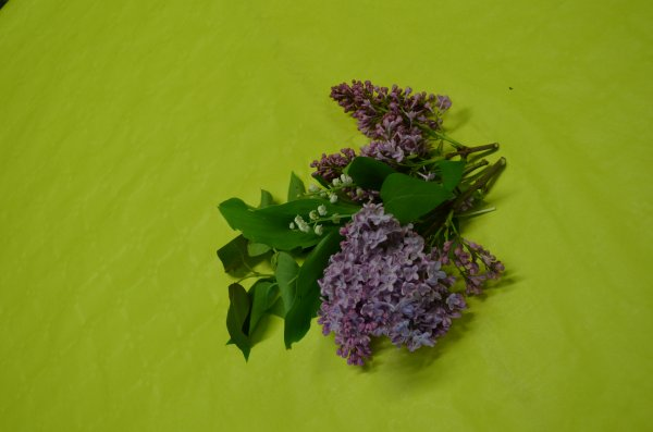 Casa femina un temps pour un monde de fleurs