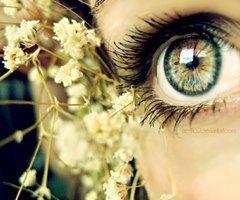 Quand je te regarde , je tombe dans ton regard si profond que je ne peux en sortir...