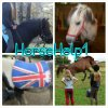 HorseHelp1