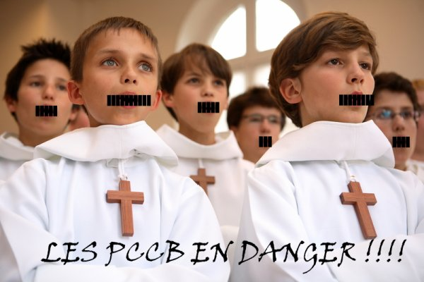 Les Petits Chanteurs à la Croix de Bois en danger!!!!!!!!!! A REMIXER SANS MODERATION SVP MERCI!!!