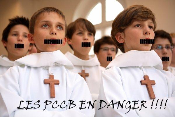 Les Petits Chanteurs à la Croix de Bois en danger!!!!!!!!!! A REMIXER SANS MODERATION SVP MERCI!!!