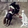 PoneyClub-de-la-Cordiere