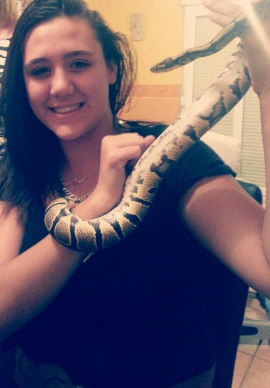 Avec le python