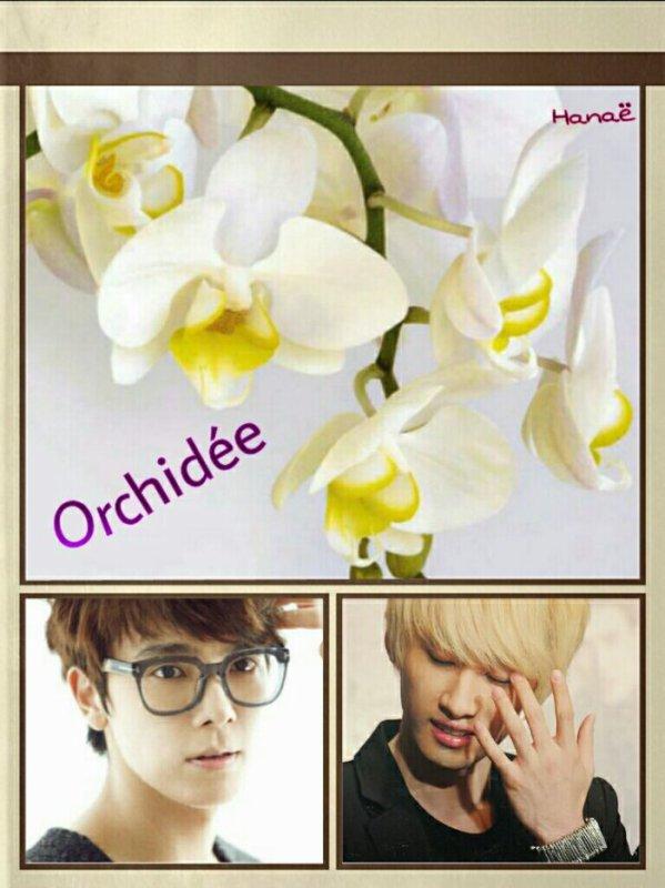 Fanfic: Orchidée